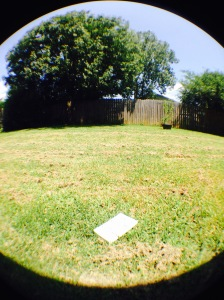 This is a picture of the book laying in the back yard. Picture taken with a fisheye lens.